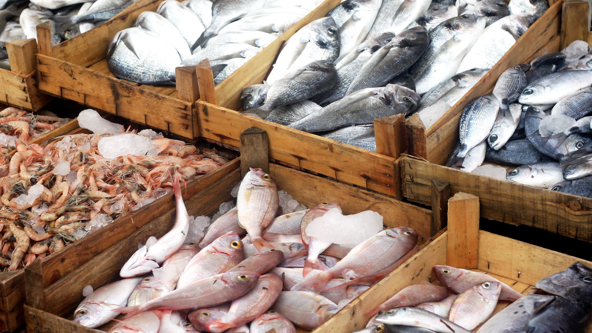 Illegal, Unregulated, and Unreported Fishing and Seafood